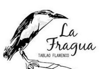 Tablao Flamenco La Fragua Madrid