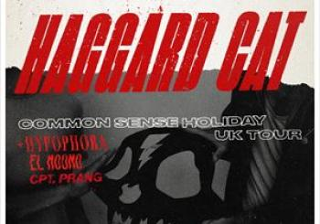 Entradas Haggard Cat guests Cornwall en The Fish Factory