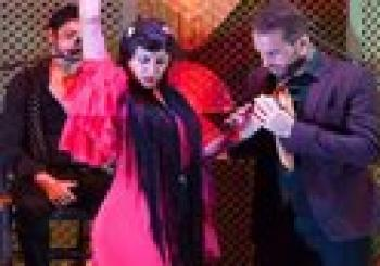 Skip the Line: Las Raices del Flamenco Ticket en Sevilla