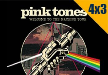 Pink Tones - Welcome to the machine Tour 2020 en Valladolid