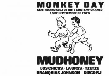 Monkey day en Sevilla
