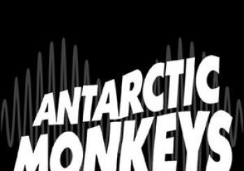 Antarctic Monkeys en The Horn