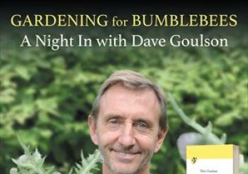A Night In With Dave Goulson en Online Stream