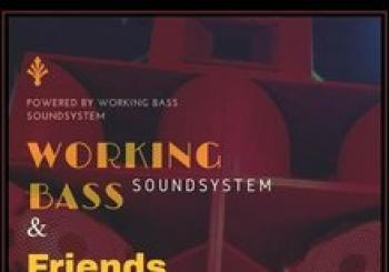 WORKING BASS SOUND SYSTEM & FRIENDS en el STEREO. En Logroño